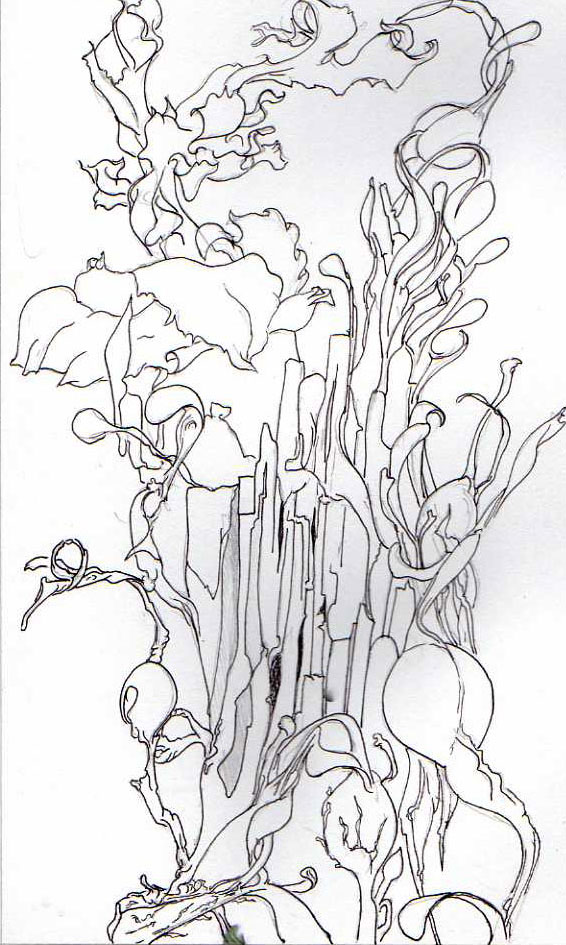 Pen and ink sketch of seaweed